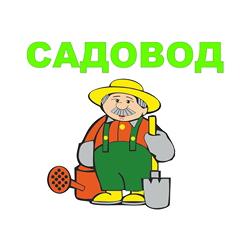 Артем Нестратов